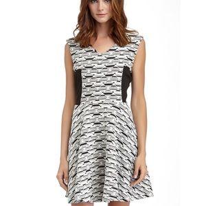 Romeo & Juliet Couture Sleeveless Flared Dress M